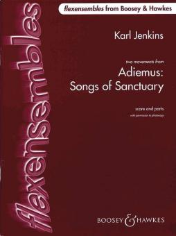 Adiemus - Song of Sanctuary